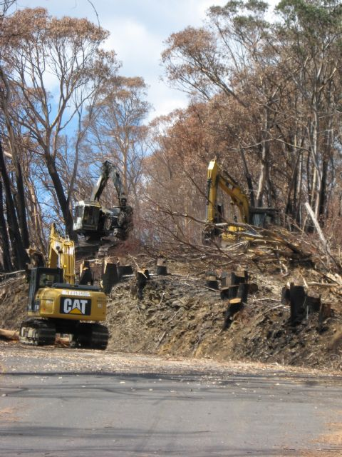 Great Alpine Road - Hotham - Tree Clearing