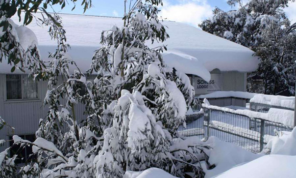 Schuss Lodge - Falls Creek - Snow Accommodation - Snow Reservations Centre
